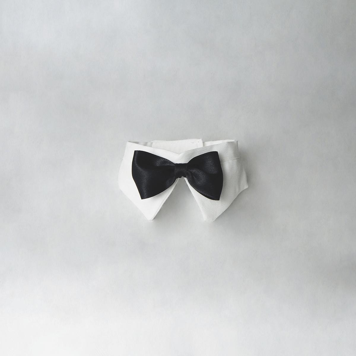 Papillon per cani bianco con fiocco nero