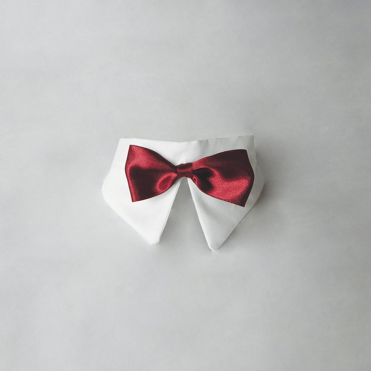 Papillon per cani rosso